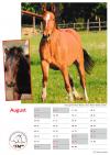 Freiberger Kalender 2020 A4